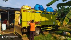 Jasa Pembuatan Bebek Air Bandung